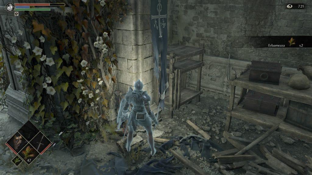 Demon's Souls Guida Erbe