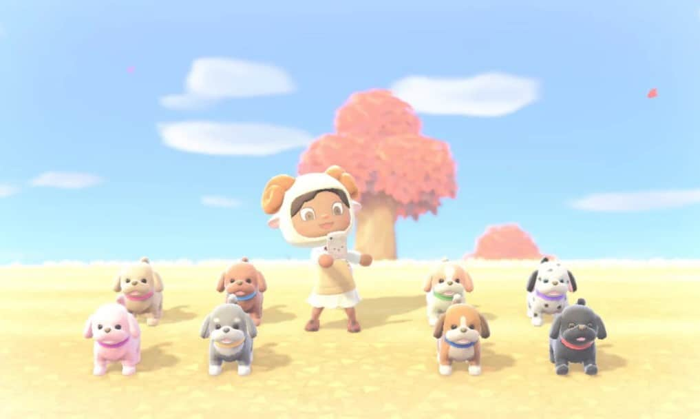 animal crossing new horizons come ottenere cani