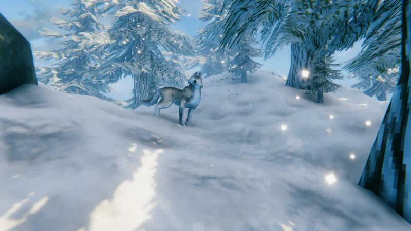 valheim mountain neve alberi lupo