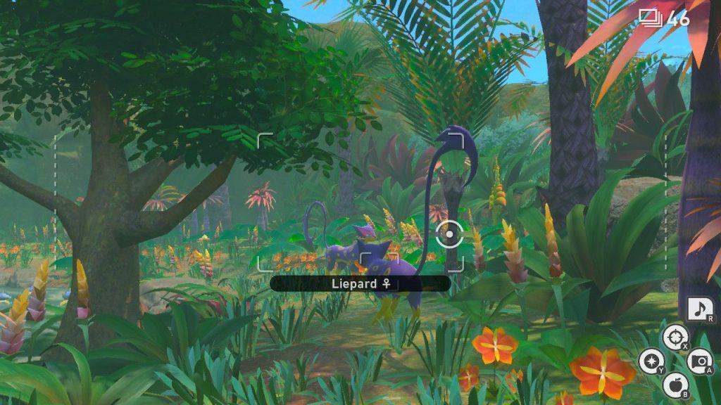 new pokemon snap giungla